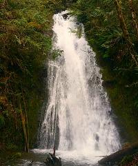 Olympic Peninsula Waterfall Trails